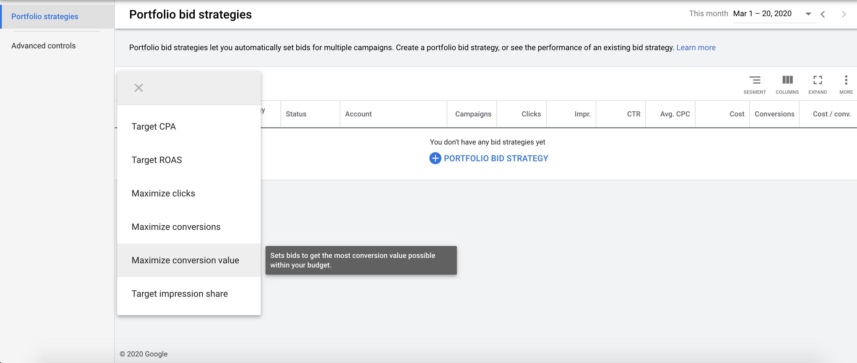 Google Ads portfolio